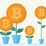 Bitcoin Tracker: A Bitcoin In Spring