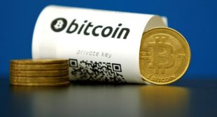 Bitcoin reaches new high against US dollar in recent surge