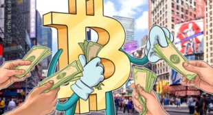 Not a Bubble: Investors Start to Recognize Bitcoin's Power