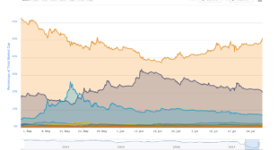 Bitcoin's 'Market Dominance' Climbs Above 50% For First Time Since May