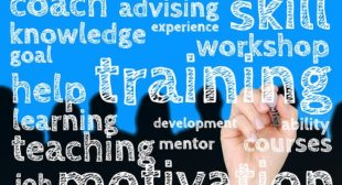 Powerful Leadership Tips Directly From The Pros