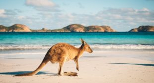 2900 'Two-Way' Bitcoin ATMs Set to Launch in Australia