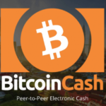 Roger Ver: 'I Hold the Majority of My Cryptocoin Wealth in Bitcoin Cash'