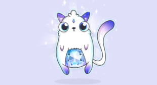 CryptoKitties explained – The massive Ethereum craze