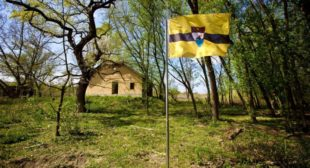 Liberland to Issue Its Own Cryptocurrency, Accepts Bitcoin, Bitcoin Cash And Ethereum