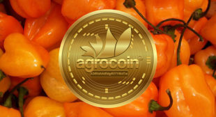 New cryptocurrency connected with pepper Habanero