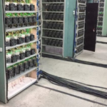 Hidden cryptocurrency mining farm has been discovered in Orenburg