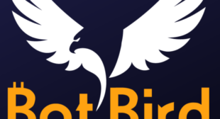 BotBird – cryptocurrencies financial investment companion for cutting-edge trading